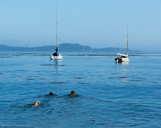 Wilbur Family At Stillwater Cove Pebble Beach